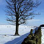 Saddleworth Moors by dawnandchris