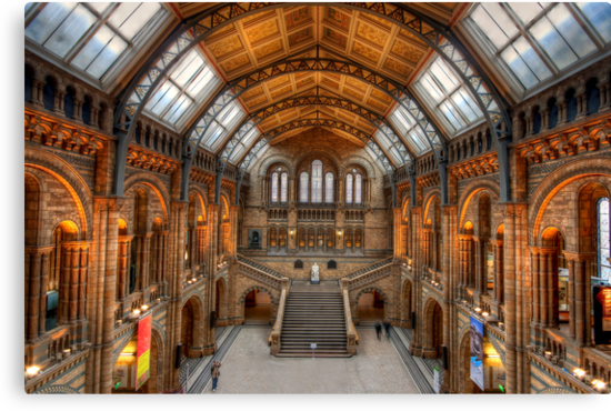 Natural History museum by Shaun Whiteman