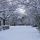 Archway of Snow by dawnandchris