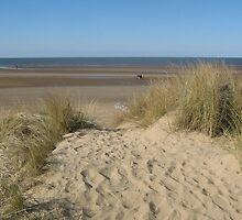 Sand Dunes, Hunstanton by Ian Bracey