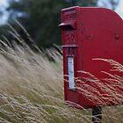 Royal Mail Post Box by DJ-Stotty