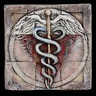 Spiral three: caduceus  by Mona Shiber