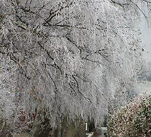 Cotswolds Winter Wonderland 3 by janrique