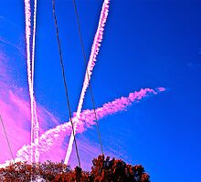 Sky Trails by Dr. Charles Taylor