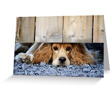 Can I come? Greeting Card