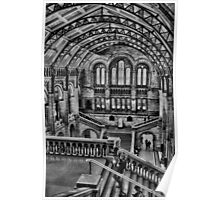 Natural History Museum B/W HDR  Poster