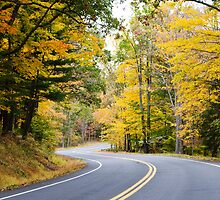 Upstate NY Country Road by MikeJagendorf