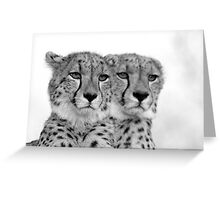 Seeing Double? Greeting Card