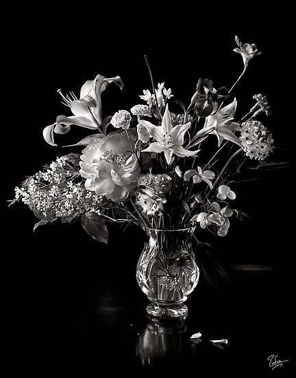 quotflower still life in black and whitequot by endre redbubble