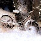 Snowbound by wiscbackroadz