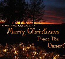 Merry Christmas From The Desert by Susan Bergstrom