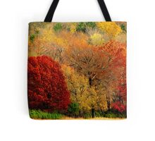 Mother Nature's Painting Her Landscapes,  Again! Tote Bag