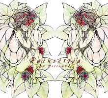 Poinsettia by yellowbee