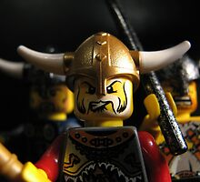 Randver, Agnarr and Hogni: Vikings on the Rampage! by Shauna  Kosoris