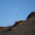 Moon at Aberdeen Beach by JaneMerson