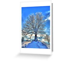 Against the Winter Greeting Card