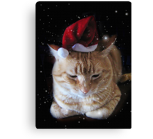 I Hat-e X-mas... Canvas Print