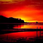 RED SKY  by RoseMarie747