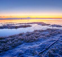 Boundary Bay Frosty Dawn by Ryan Watts