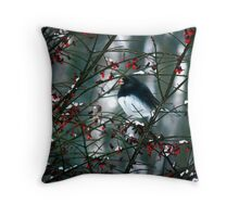 Black Eyed Junco with a Berry  Throw Pillow