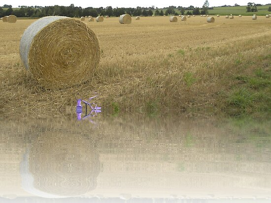 A Roll in the Hay. by albutross