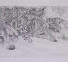 Wolf Pups in Hiding by BrandyHouse