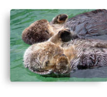 Otters Holding Paws Canvas Print