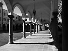 Arches & Columns Pima County Courthouse ~ Black & White by Lucinda Walter