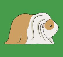 Long Haired Guinea-pig - Light Brown and White by zoel