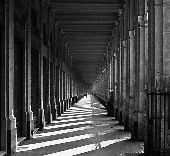 Palais Royal - Paris by Alex Howen