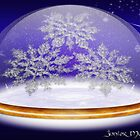 Winter Snowglobe by Junior Mclean