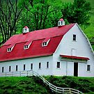 Hillside Stable Barn by RickDavis
