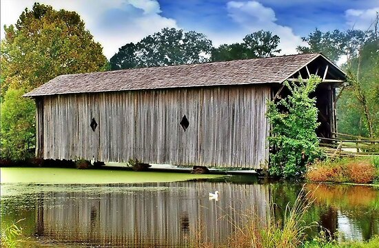 Sumter County Covered Bridge by RickDavis
