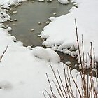 Little Stream in the Snow by Laurel Talabere