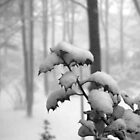 Loaded with snow by steppeland