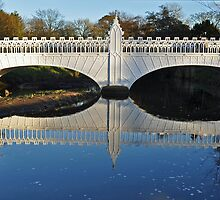 Tournament Bridge Eglinton Park ,Kilwinning by Bickeringbush
