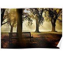 Morning in the Park Poster