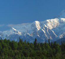 Denali in Panorama - Highest Mountain - USA by Barbara Burkhardt
