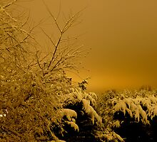 Snow filled sky at 5am by CiaoBella