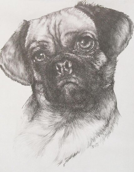 Puggle by BarbBarcikKeith