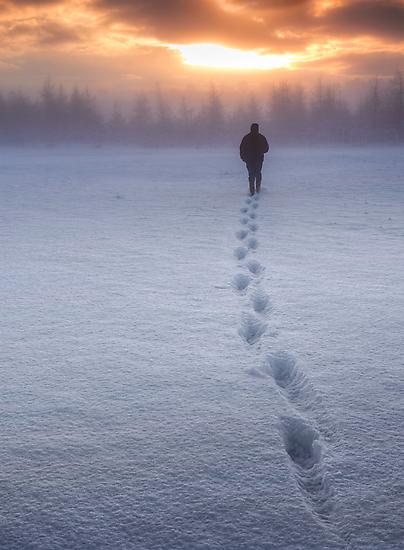Homeward by James Coard