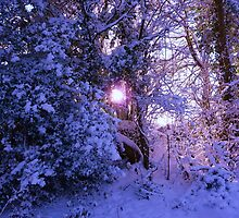 Winter wonderland by Meladana