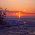 Sunrise in Winter by Jo Nijenhuis