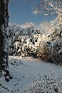 First Snow Fall by Nigel Fletcher-Jones
