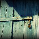 Little Green Door by Hazel Dean