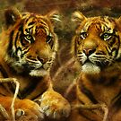 Little Sumatrans Aceh and Indrah by Trudi&#x27;s Images