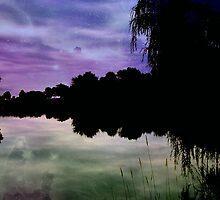 Dreamland ©  by Dawn M. Becker