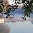 Autumn Fog - Lake Jackson - Covington, Georgia by Betty Northcutt