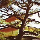 Kinkakuji Temple by Janette Zlamal