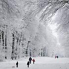 Walking in the white by Paulo van Breugel